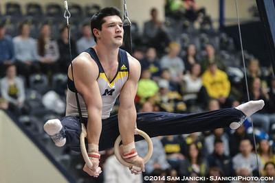 Best of Michigan Men's Gymnastics Vs Nebraska 2-8-14