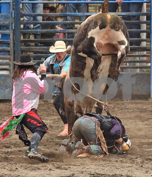 Bull riding 3455c.jpg