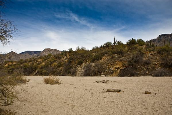 2010 Catalina State Park