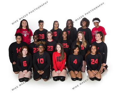 LHS Vball Team