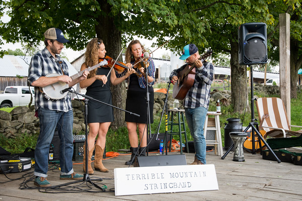 Terrible Mountain Stringband 2018