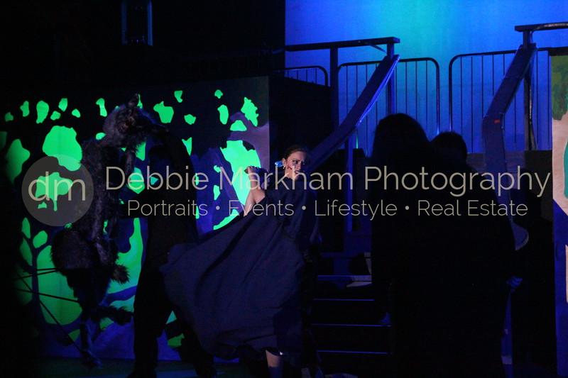 DebbieMarkhamPhoto-Opening Night Beauty and the Beast410_.JPG