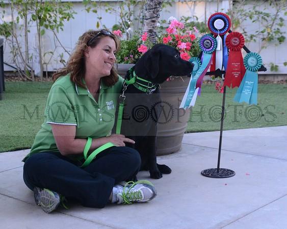 Nw  3 Simi Valley  2-6-16 Awards