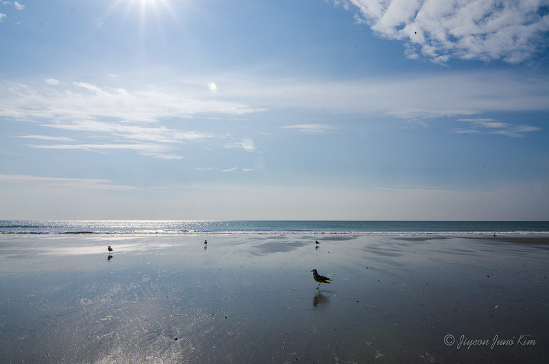 USA-SC-Myrtle Beach-4217.jpg