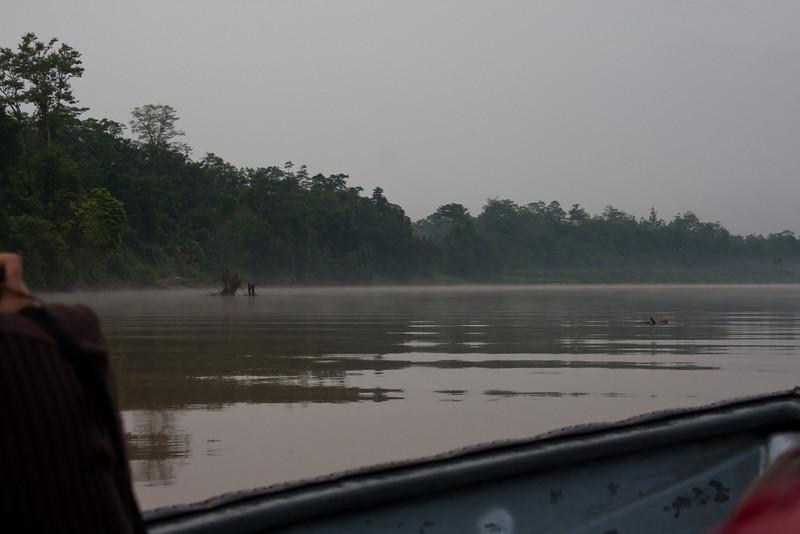 Sungai Kinabatangan