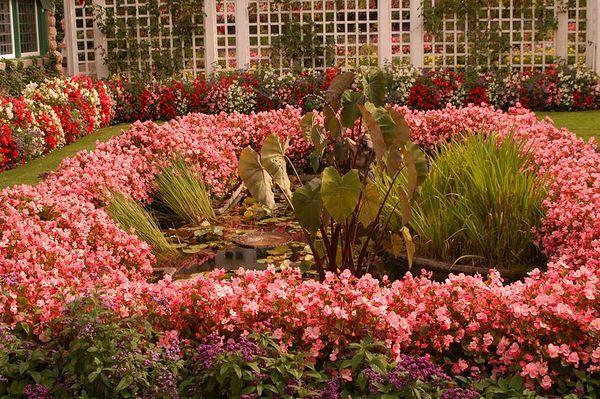 VICTORIA  B.C. Buchart  Gardens