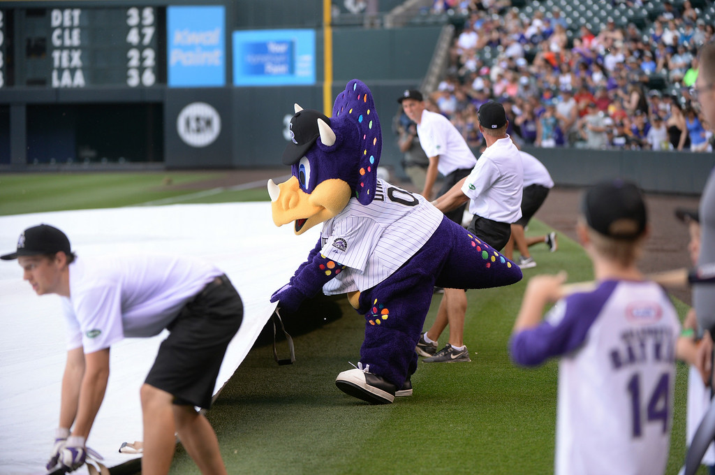 . DENVER, CO - JUNE 20: Rockies mascot Dinger helped members of the grounds crew pull the tarp into place as a weather delay was initiated at Coors Field Saturday afternoon. The Colorado Rockies are set to host the Milwaukee Brewers at Coors Field Saturday afternoon, June 21, 2014. Photo by Karl Gehring/The Denver Post