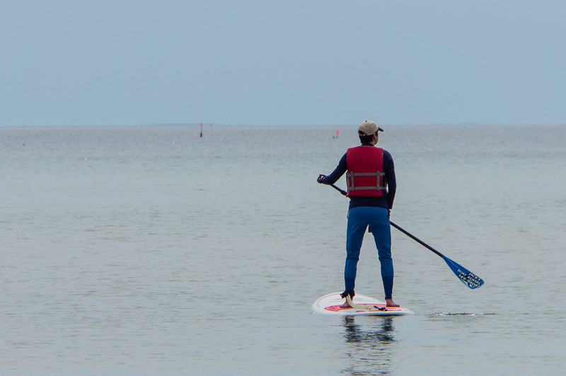 Daphneon paddle board