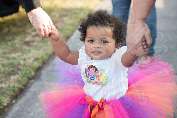 Brie 1st Bday Party