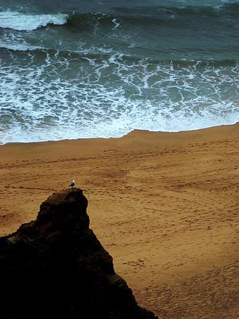 Farktography - Shoreline