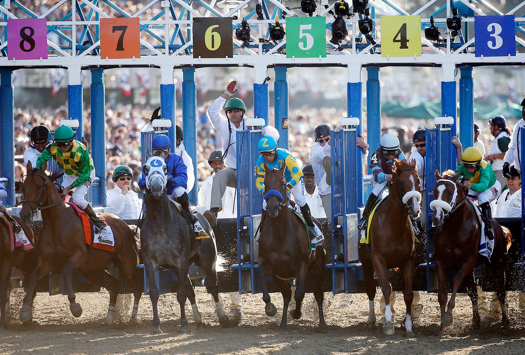 . The field leaves the starting gate at the beginning of the 147th running of the Belmont Stakes at Belmont Park on June 6, 2015 in Elmont, New York.  (Photo by Rob Carr/Getty Images)