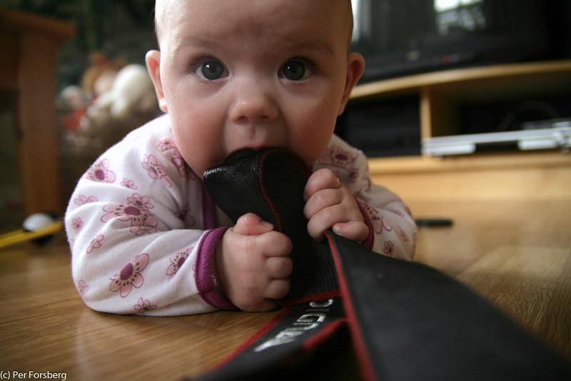 """""""Om jag gnager på kameran så kanske inte pappa kan ta några bilder..."""""""