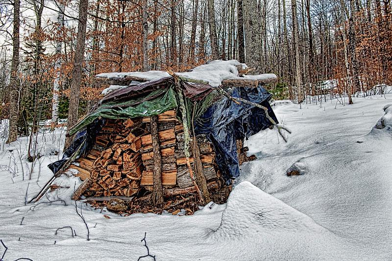Wood Pile   #1048