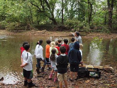 4W Creek Study