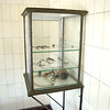 Vivisection tools used in post-mortems after prisoners died, some from medical experiments