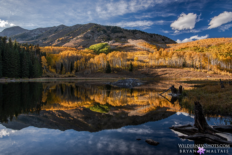 Crested Butte Pond