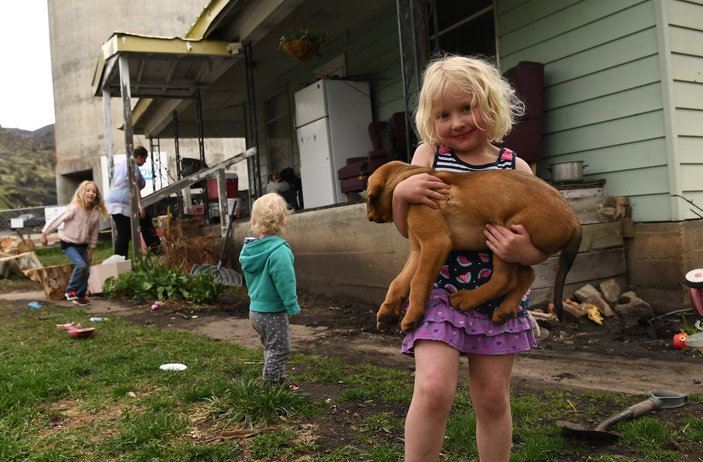 . Raelynn Farnsworth, 4, holds her new puppy, as her mom and two sister play, April 27, 2016. The family lives across the street from the Oxbow mine, in Somerest, Colorado, that recently stopped operations. Raelynn\'s father works in a near by gravel pit that depends a lot on business form the area\'s coal mines. (Photo by RJ Sangosti/The Denver Post)