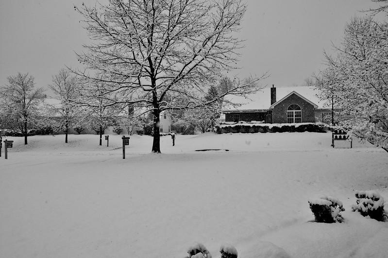 Winter Villas - Tom Fennelly