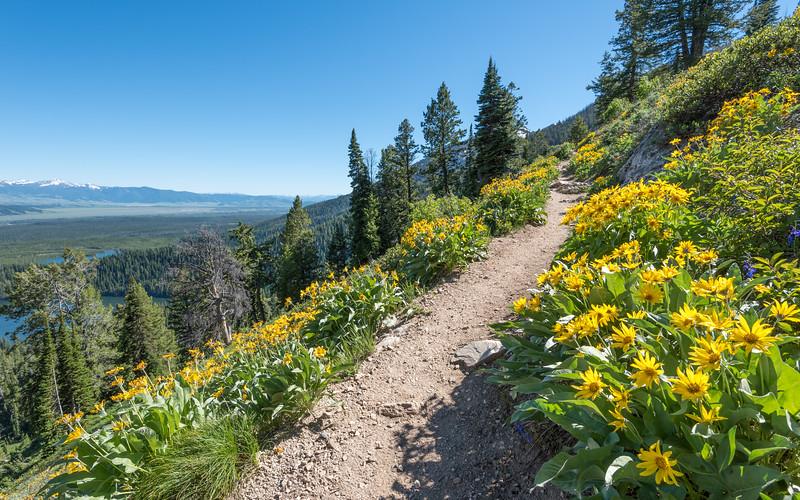 GNTP Trail Hiking