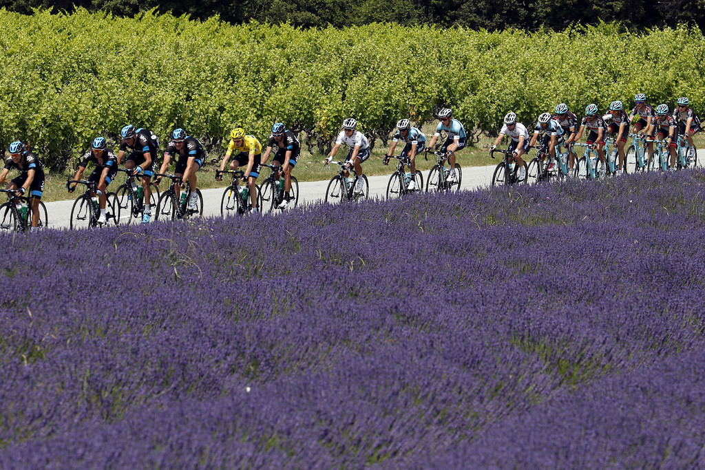 . Overall leader\'s yellow jersey Britain\'s Christopher Froome (5rdL) rides in the pack past a lavender field during the 242.5 km fifteenth stage of the 100th edition of the Tour de France cycling race on July 14, 2013 between Givors and Mont Ventoux, southeastern France.   JOEL SAGET/AFP/Getty Images