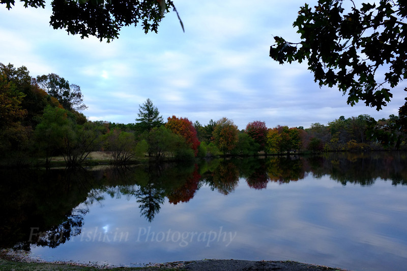 Turkey Swamp lake 2.jpg