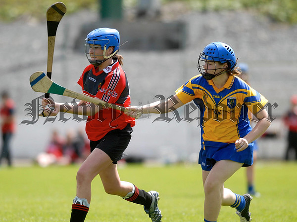 An Dun V Roscomain Camogie Semi Final. An Dun's Nicola O Hagan