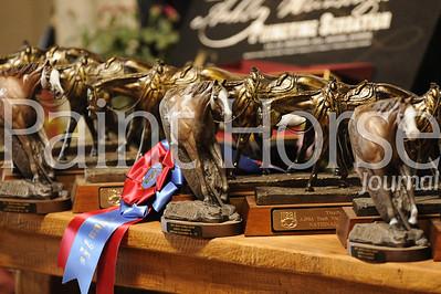 2012 AjPHA Youth World Show