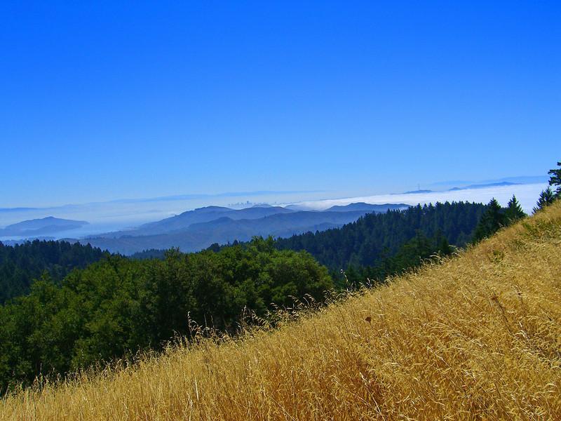 Mt. Tam view to San Francisco city skyline