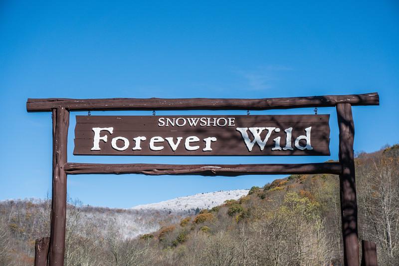 Forever Wild Sign.jpg