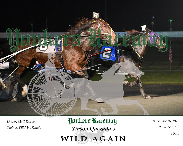20191126 Race 4- Wild Again 1.jpg