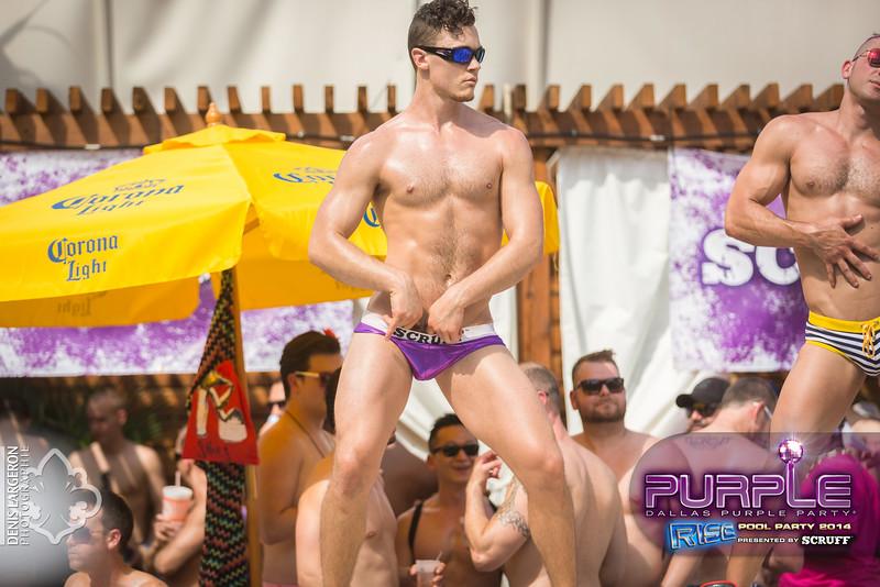 2014-05-10_purple06_578-3255133424-O.jpg
