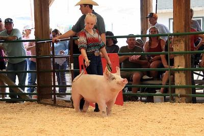 Market Swine 2