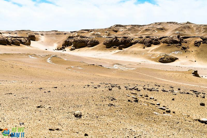 Wadi-El-Hitaan-02444.jpg