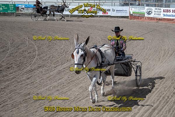 Donkey Pole Bending