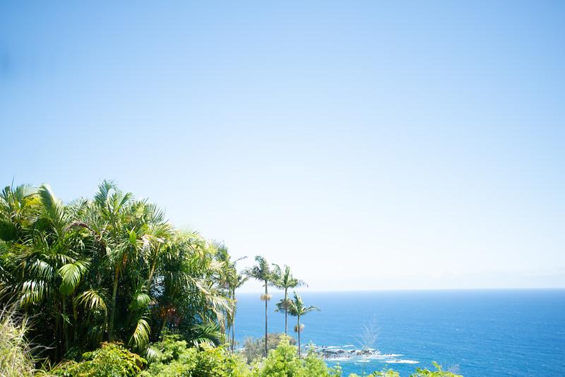 Hawaii2019-128.jpg