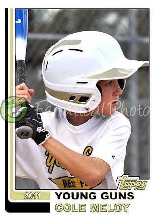 2011 Baseball Card Photos 5 x 7 prints