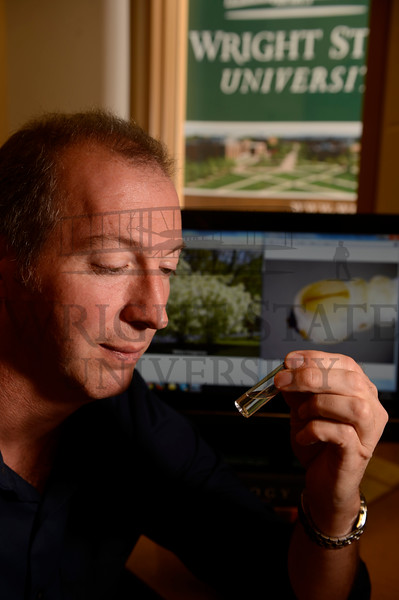 14576 Don Cipollini for Emerald Ash Borer Newsroom Story 10-2-14