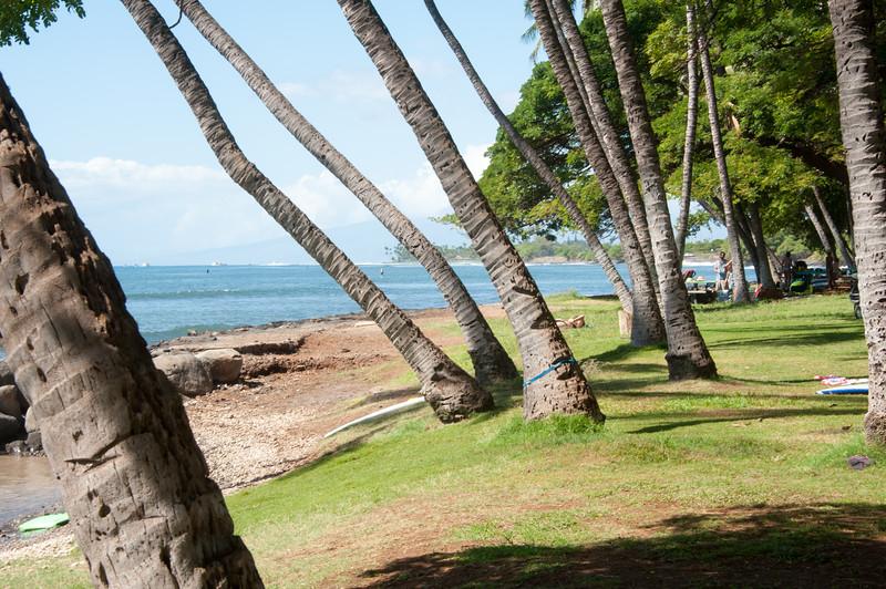 Maui_20181023_182508-670.jpg