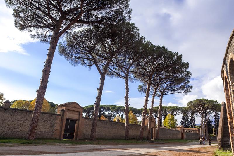 Pompeii 7025.jpg