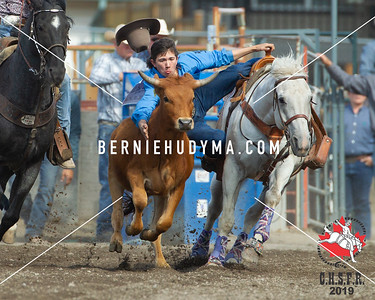 Steer Wrestling Fri-Sun 2019