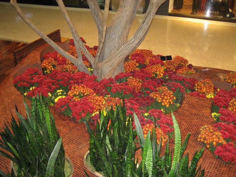 Miami and Las Vegas 2010 237.JPG
