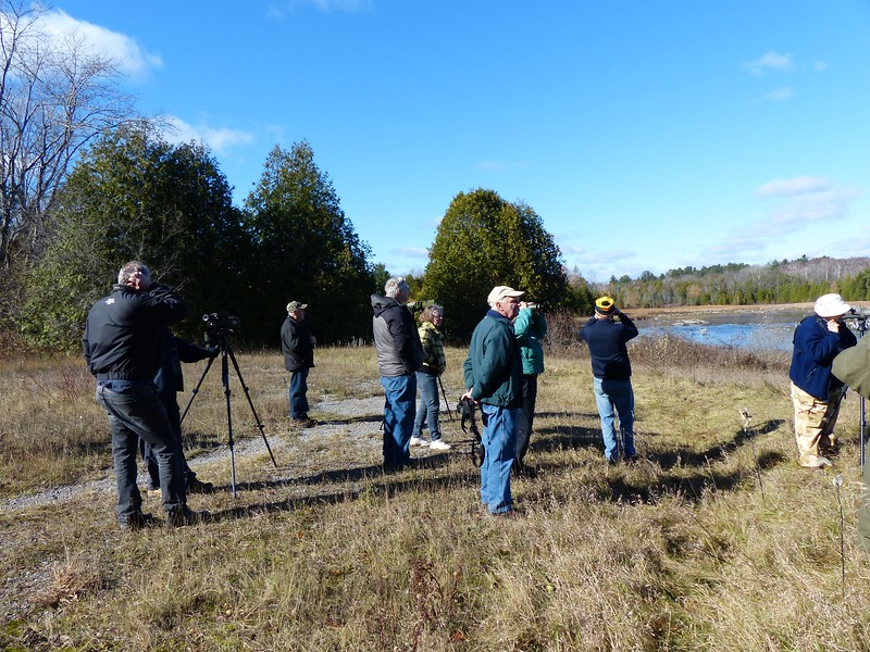 WBFN members viewing birds on the Garden Hill Pond