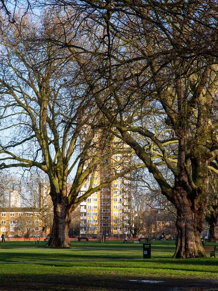 London Fields park