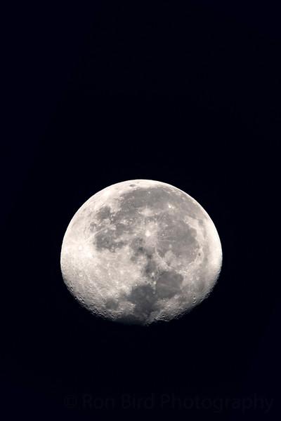 9.5.20 - Luna over Heritage Bay