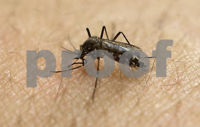 utah-man-may-have-contracted-zika-from-dying-fathers-tears