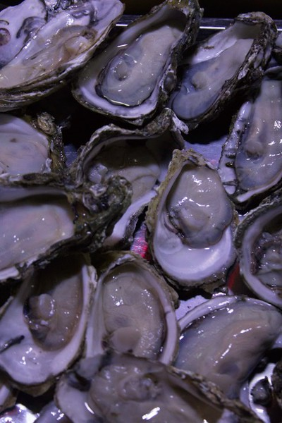 Select your oysters for dinner in Xian - Stephanie Pincus