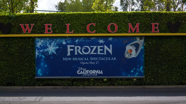 Disneyland Resort, Disneyland, Disney California Adventure, Frozen, Mickey, Friends, Tram