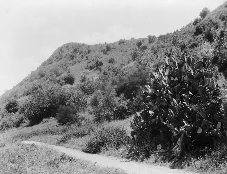 1895, A Mission Road