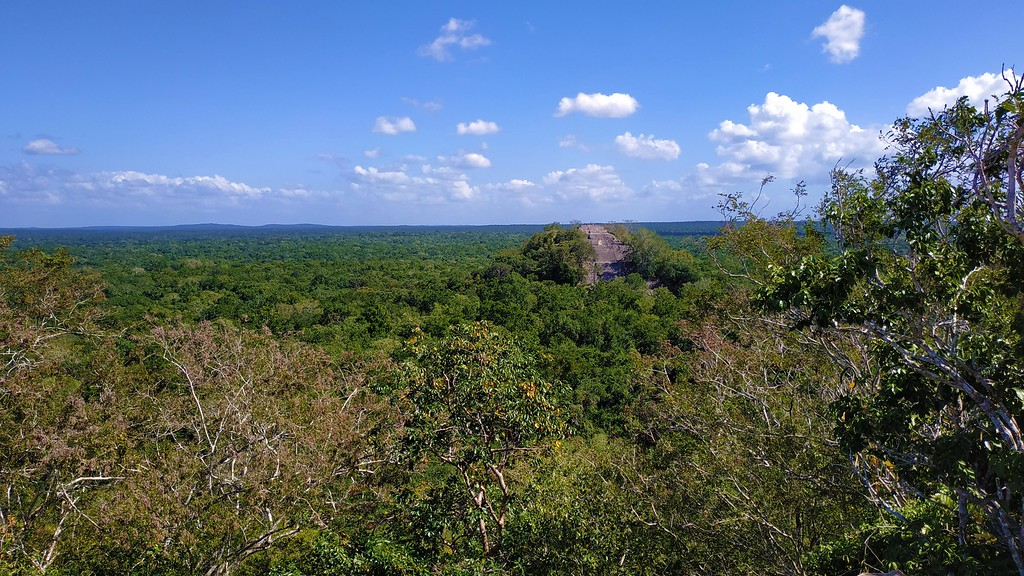 Calakmul -Best Mayan Ruins in Mexico