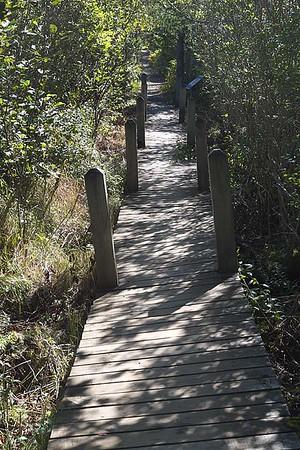 Balancing Rock, Long Island, Digby Neck